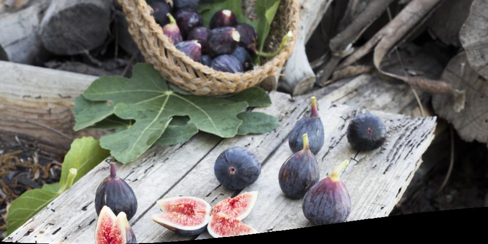 Fruits secs naturels Jean-Louis BASSINET